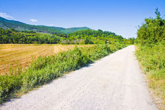 Tipical Tuscany country road called Stock Photography