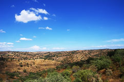 Tipico asciughi il paesaggio della regione dell'Alentejo, Portogallo Fotografia Stock
