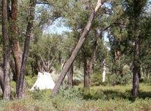 Tipis dell'nativo americano Fotografie Stock