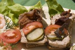 Tipo aperto panini dello scandinavo Immagine Stock Libera da Diritti