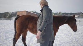 Tipo barbuto allegro in vetri che portano un cappotto che segna i cavalli su un ranch del paese I cavalli camminano all'aperto ne stock footage