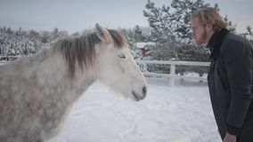 Tipo barbuto con i vetri che prendono in giro un cavallo Tipo allegro allegro divertendosi con un cavallo su un ranch del paese n video d archivio