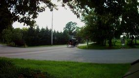 Tipo cochecillo del transporte de Amish de la familia
