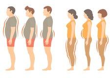 Tipo de corpo da mulher e do homem da obesidade ilustração stock