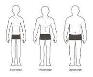 Tipo de corpo masculino carta ilustração do vetor