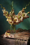 Tipo de flor fotos de stock royalty free