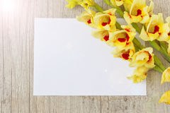 Tipo de flor amarelo Imagens de Stock Royalty Free