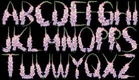 Tipo de flor do alfabeto fotografia de stock royalty free