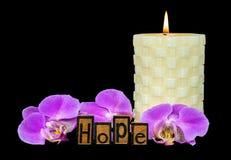 Tipo de la prensa de copiar de la esperanza con la orquídea Imagen de archivo libre de regalías