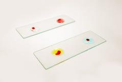 Tipo de sangre prueba Fotos de archivo libres de regalías