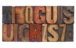 Tipo di legno estratto dello scritto tipografico Fotografia Stock Libera da Diritti