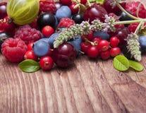 Tipo diferente de frutos de baga Foto de Stock Royalty Free