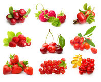 Tipo diferente de frutos de baga isolados Fotografia de Stock Royalty Free