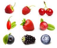 Tipo diferente de frutos de baga isolados Foto de Stock Royalty Free