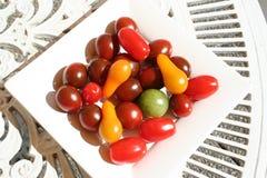 Tipo diferente dos tomates Imagem de Stock