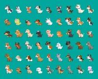 Tipo differente di cani del fumetto Fotografia Stock