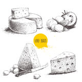 Tipo differente disegnato a mano di insieme del formaggio illustrazione vettoriale