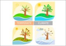 Tipo differente icone/di stagione quattro disegni semplicistici Fotografia Stock Libera da Diritti