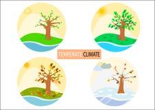 Tipo differente icone rotonde/disegni semplicistici di stagione quattro Immagine Stock Libera da Diritti
