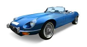 Tipo do jaguar E imagem de stock royalty free