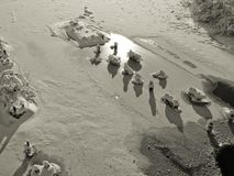 Tipo do rio congelado Fotografia de Stock Royalty Free