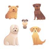 Tipo lindo de la colección diverso de perros pequeños y grandes La raza del vector aisló el sistema Ejemplos de la historieta un  Imágenes de archivo libres de regalías