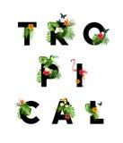 Tipo temático tropical de las letras Foto de archivo