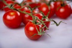 Tipo tomates da cereja Foto de Stock
