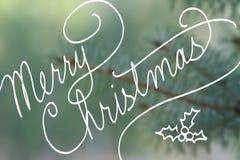 Tipografía cursiva de la escritura que dice Feliz Navidad en el árbol de navidad spruce azul borroso Fotos de archivo libres de regalías
