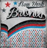 Tipografia di New York Bronx dell'istituto universitario, grafici della maglietta, vettori illustrazione vettoriale