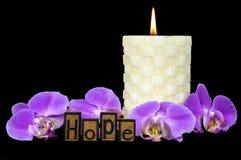 Tipografia do texto da esperança typeset com orquídeas Fotos de Stock