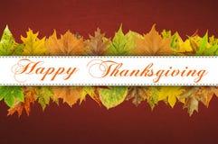 Tipografia feliz da ação de graças nas folhas de outono Imagem de Stock Royalty Free