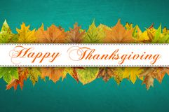 Tipografia feliz da ação de graças nas folhas de outono Foto de Stock Royalty Free