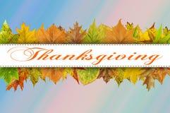 Tipografia feliz da ação de graças nas folhas de outono Fotos de Stock Royalty Free