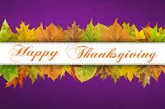 Tipografia feliz da ação de graças nas folhas de outono Imagens de Stock