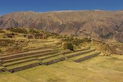 Tipon fördärvar Cuzco Peru Royaltyfria Bilder