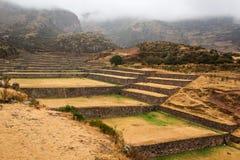 Tipon - incaen fördärvar av jordbruks- terrasser i Peru Royaltyfri Foto