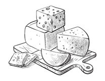 Tipos da fatura de queijo vários de grupo do queijo de esboços do vetor Fotografia de Stock