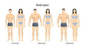 Tipos de corpo humano ilustração do vetor