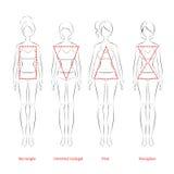 Tipos de cuerpo femenino Fotos de archivo libres de regalías
