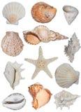 Tipos de escudos   fotografia de stock