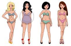Tipos de figura fêmea ilustração stock
