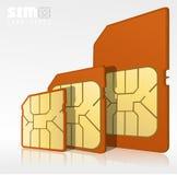Tipos de tarjeta de Sim Imágenes de archivo libres de regalías