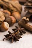 Tipos diferentes das especiarias, das porcas e de laranjas secadas Fotos de Stock Royalty Free