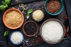 Tipos diferentes de arroz em bacias imagem de stock royalty free