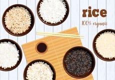 Tipos diferentes de arroz em umas bacias no fundo de madeira branco Basmati, selvagens, jasmim, marrom longo, arborio, sushi chop ilustração stock