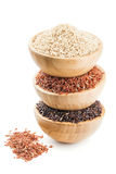 Tipos diferentes de arroz no bacias de madeira isoladas no branco Imagens de Stock Royalty Free