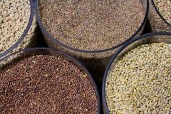 Tipos diferentes de cereais da grão em uns recipientes transparentes imagem de stock