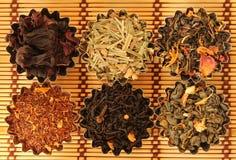 Tipos diferentes de chá Foto de Stock