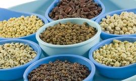 Tipos diferentes de feijões e de pulsos em uns recipientes Fotografia de Stock
